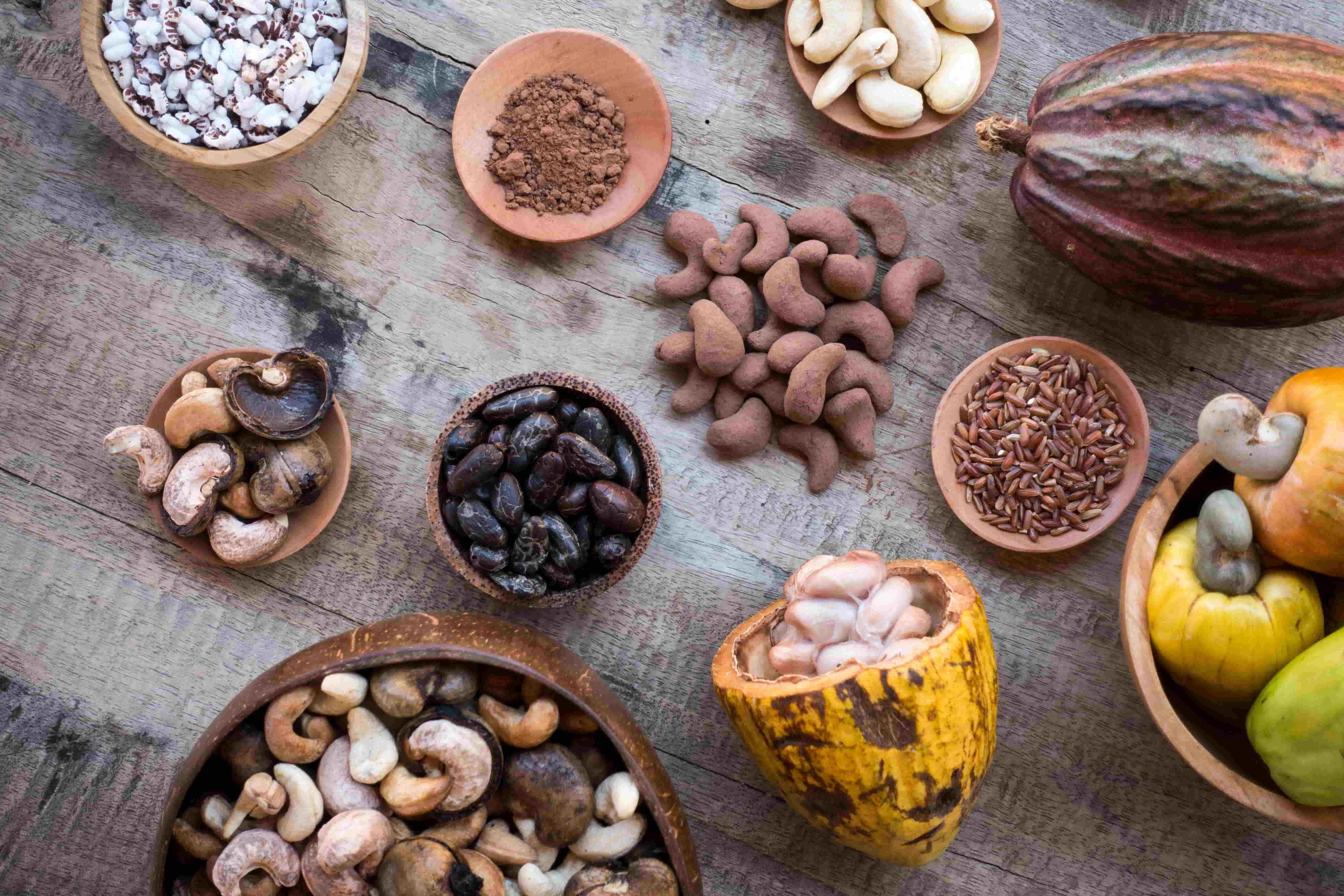 タンパク質とビタミン